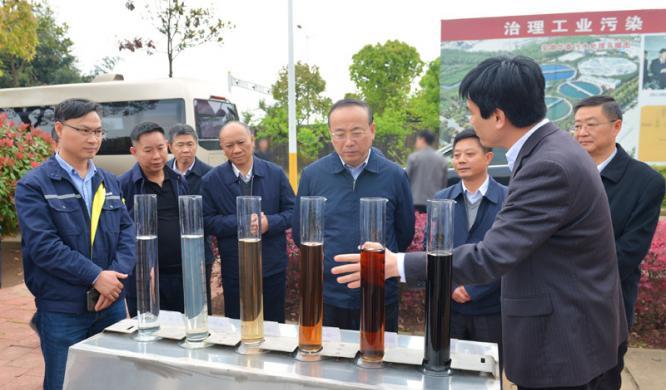张祥安到迎江区调研长江生态保护工作